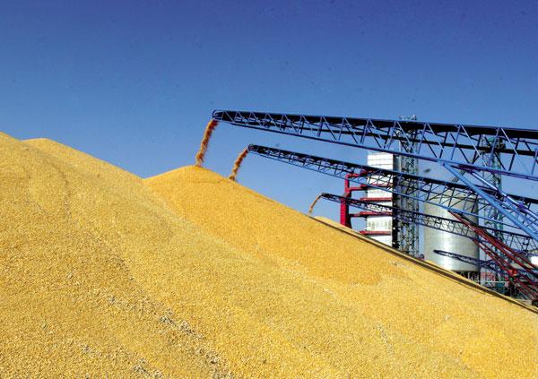 国内外粮食市场深度融合成趋势
