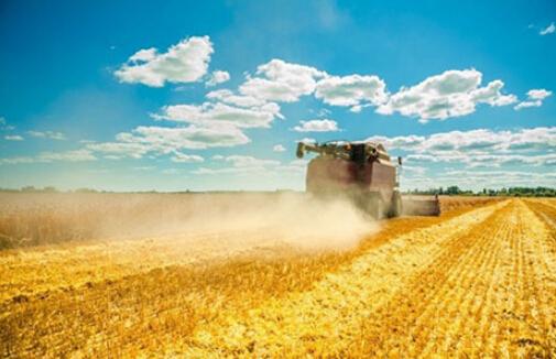 一季度农业经济报告:农业整体