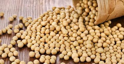 供应紧张推动巴西大豆价格飙升